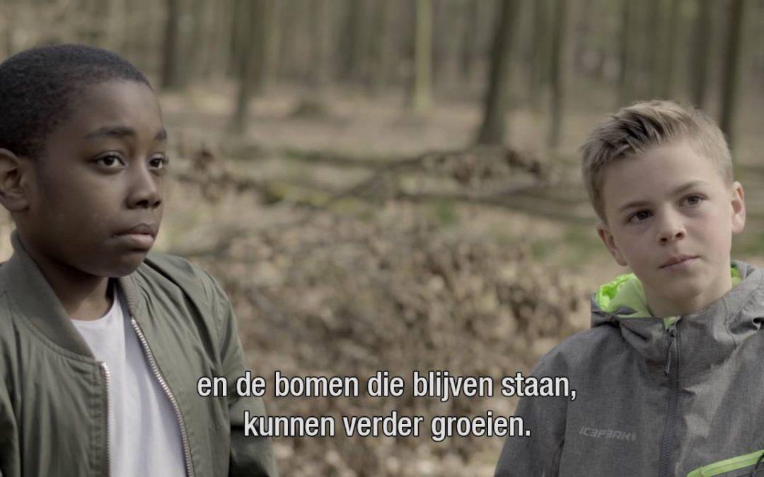 Film Duurzaam Hout uit de Bossen