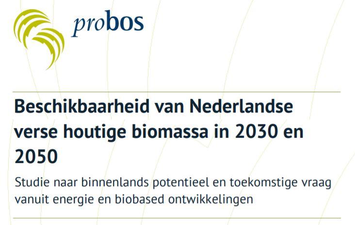 Rapport over regionale beschikbaarheid van houtige biomassa gepubliceerd