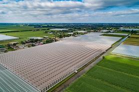 Eerste beton gestort voor 15 MW houtcentrale Koekoekspolder