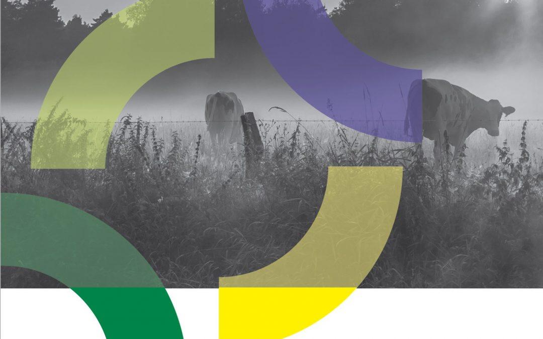 Jaarverslag 2018: BEON werkt volop aan duurzame energie!