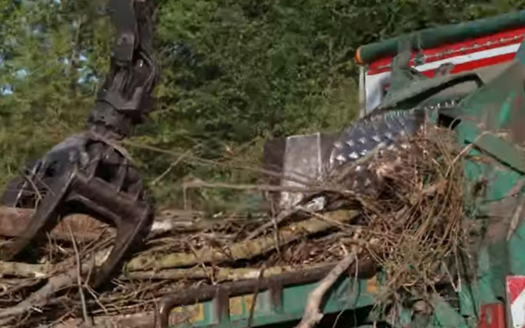 Biomassaverbranding met nuttig gebruik van warmte en CO2